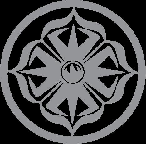 siddhi yoga energy healing practitioners vajra