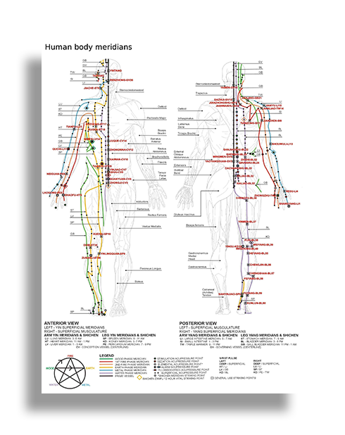 acupressure treatment and marma therapy