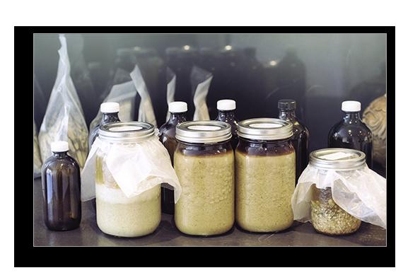 medicinal herbal remedies - herbal tinctures