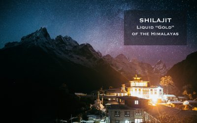 "Shilajit: Liquid ""Gold"" of the Himalayas"