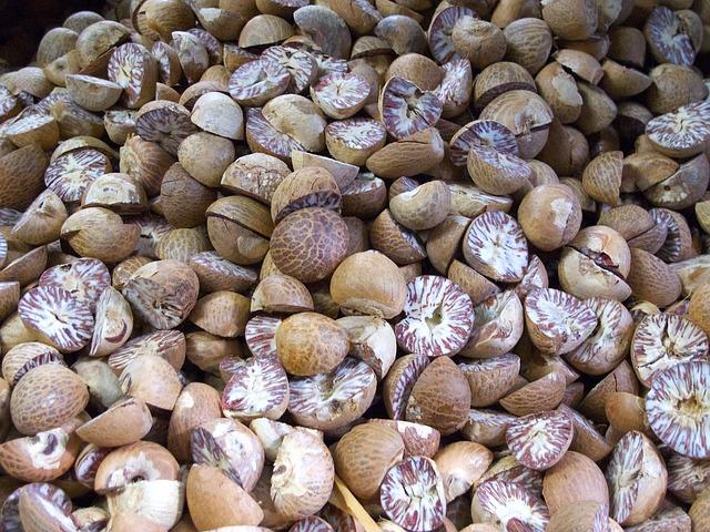 astringent herbs - nutmeg